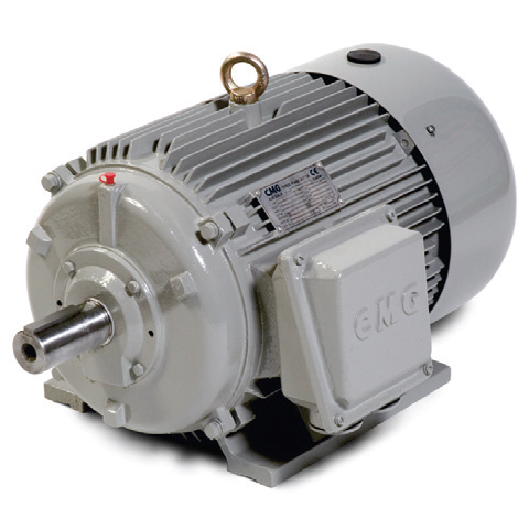 Cmg 3-Phase Electric Motors